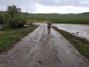 Tekman'da sel etkili oldu