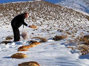 '1001 Hatim' anısına doğaya 2001 ekmek bıraktı